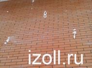 izoll1